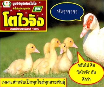 to3-Animal feed-Sidebar1