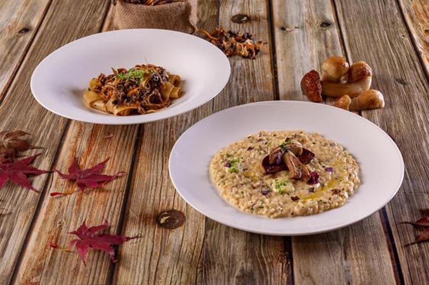 ห้องอาหาร อัพ แอนด์ อะบัฟ นำเข้าเห็ดจากป่าในทวีปยุโรปมาปรุงเป็นอาหารจานพิเศษ