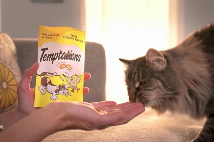 TEMPTATIONS™ ขนมแมวอันดับ 1 โลก พร้อมเสิร์ฟ 5 รสชาติอร่อย