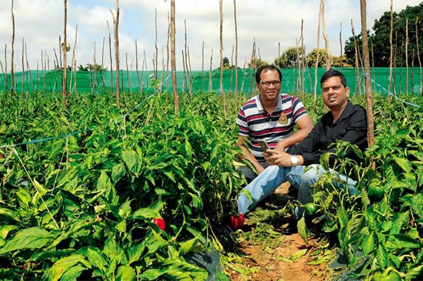 CropIn ระดมทุน 8 ล้านดอลลาร์จากกลุ่มนักลงทุน นำโดย Chiratae Ventures เพื่อผลักดันวิสัยทัศน์สู่การเป็นผู้นำด้านเทคโนโลยีการเกษตรระดับโลก
