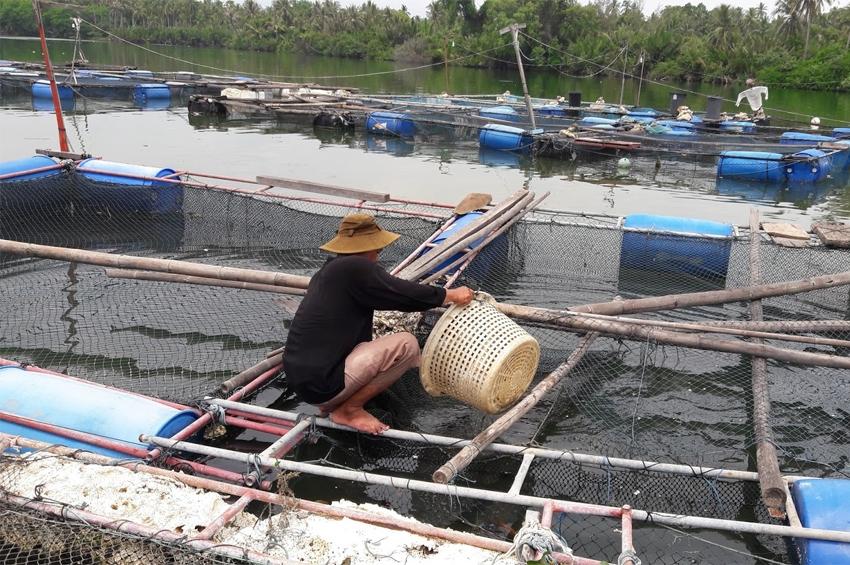 ประมงไทยส่อรุ่ง ยุโรปขานรับ…หลังไทยได้ใบเขียว