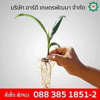 rdkaset-Agriculture-Sidebar2
